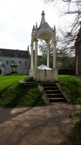 Wittenberg, Wörlitz